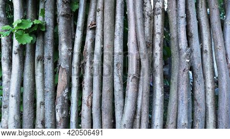 Rustic Fence Made Of Thin Tree Trunks With An Uneven Surface Texture, Wooden Country Space Made Of C