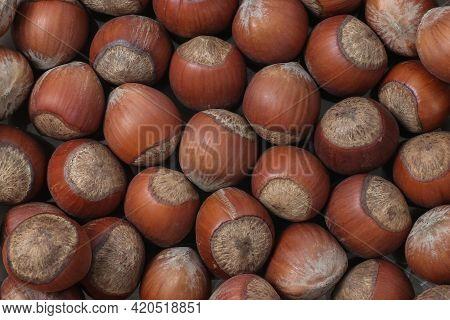 Hazelnuts Close Up Top View, Hazelnuts Background