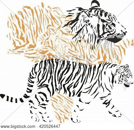 Vector Illustration With Tiger Fur Pattern And Tiger Head Background With Indian Peninsula Map