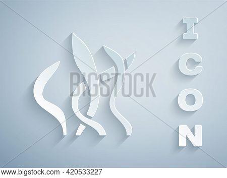 Paper Cut Seaweed Icon Isolated On Grey Background. Underwater Seaweed Spirulina, Aquatic Marine Alg