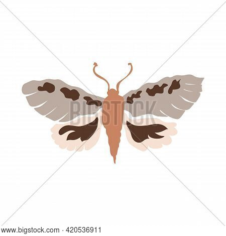 Naive Doodle Neutral Butterfly Motif Icon. Cute Rustic Folk Silhouette Illustration Clipart. Decorat