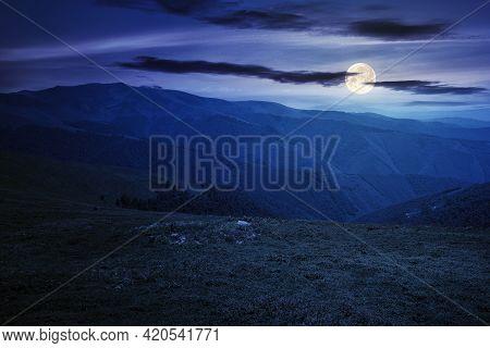 Alpine Mountain Meadow In Summer At Night. Beautiful Landscape Of Carpathians In Full Moon Light