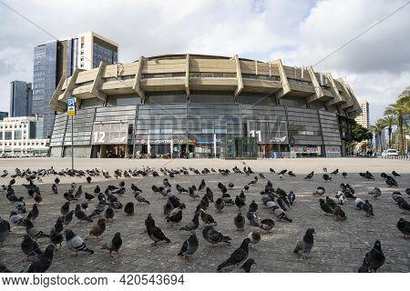 Tel Aviv, Israel - March 25th, 2021: A Flock Of Pigeons Outside The Menora Mivtachim Arena In Tel Av
