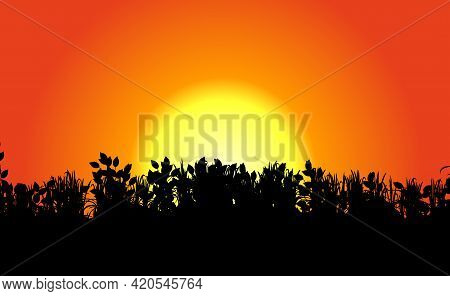 Horizon and orange dawn, sunrise or sunset abstract background with black grass silhouette. Burning sunsets. Morning, evening dawning backdrop. Vector illustration Eps 10.