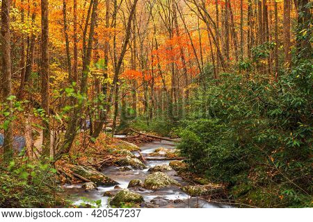 Smith Creek flowing from Anna Ruby Falls, Georgia, USA in autumn.