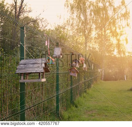 Bird Feeder In The Park. Bird Feeders Hang On The Fence In The Park. Spring.sunrise.