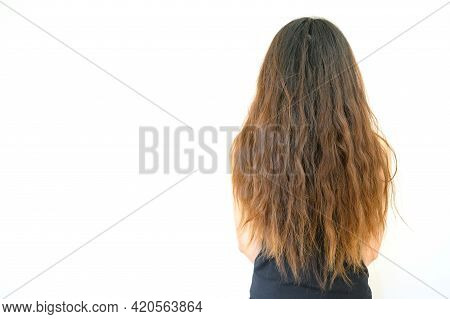 Back View Of Woman With Her Damaged Split Ended Hair. Hair Damage Is Risk For Further Damage And Bre
