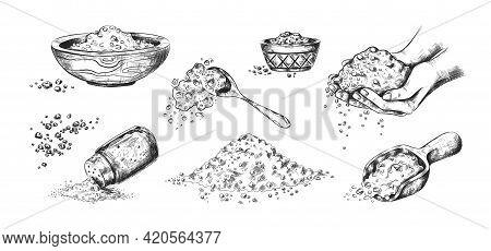 Sea Salt Sketch. Hand Drawn Seasoning In Wooden Bowls Or Glass Saltcellar. Scoop And Spoon Full Of C