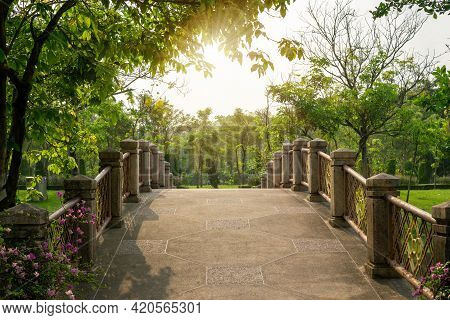 Curve Concrete Bridge In The Park Under Green Leaves Tree, Sunlight Morning, Greenery Trees On Backg