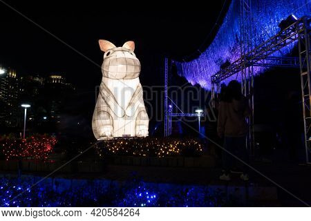 Taichung City, Taiwan - Feb 23rd, 2020: lantern festival with tourists and lanterns at Wen-Xin Forest Park in Taichung City, Taiwan, Asia