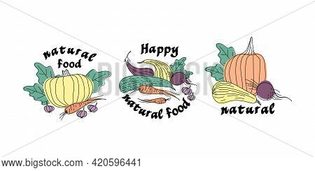 Set Of Stickers Of Vegetables Drawn With Live Line. Pumpkin, Zucchini, Carrots, Beets, Eggplants, Ga