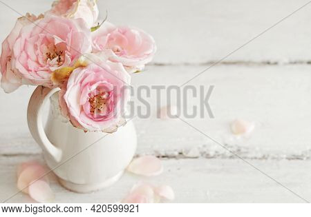 pink rose flowers in a vase. shabby chic colors. copy space for text. mothers day, birthday, wedding card
