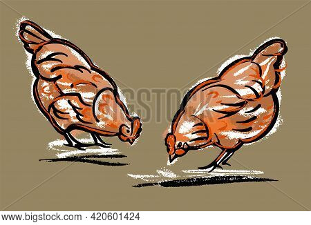Two Chickens Peck At The Grass. Illustration Sketch By Hand, Color On An Isolated Background.