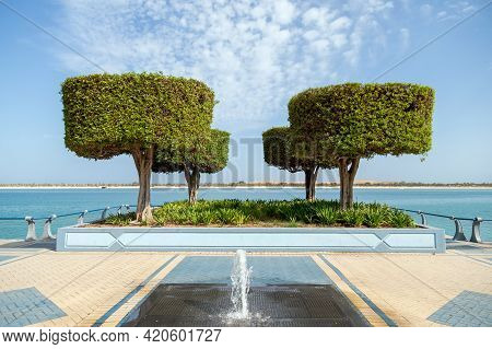 Four Trees At Abu Dhabi Corniche In The Morning. Public Walkway With Small Fountain In The Middle.