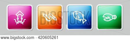 Set Line Octopus, Eel Fish, Tropical And Lobster Or Crab Claw. Colorful Square Button. Vector