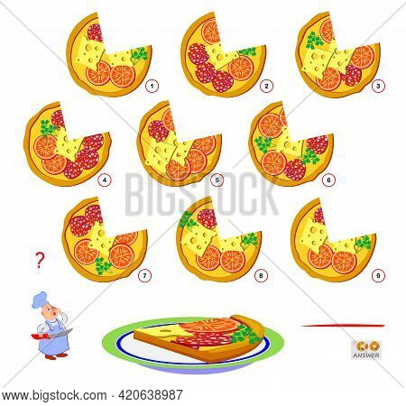 Logic Puzzle Game For Children And Adults. Find The Pizza That Cook Has Cut Off The Slice. Page For