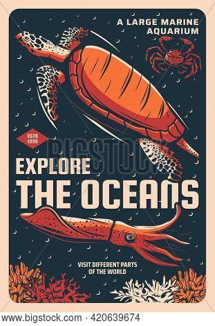 Sea Turtle, Stone Crab And Giant Squid In Marine Aquarium Sketch Vector Banner. Ocean Animals And Tr