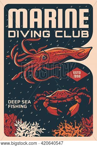 Marine Diving And Deep Sea Fishing Club Sketch Vector Poster. Squid Or Cuttlefish, Stone Crab Swimmi