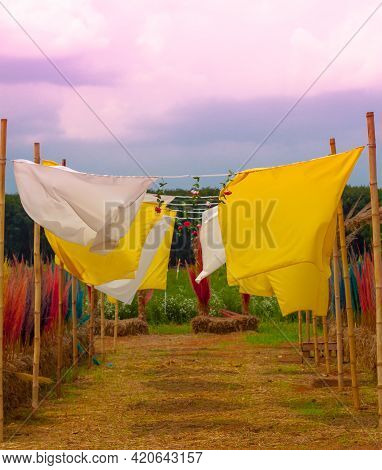 Yellow Curtains And White Curtains Are Blowing In The Farm With Different Colorful Dried Flowers In