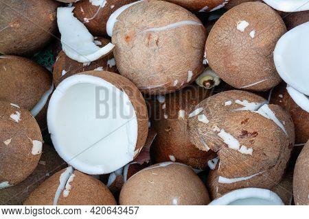 Inner Of Fresh Coconut For Make Coconut Milk