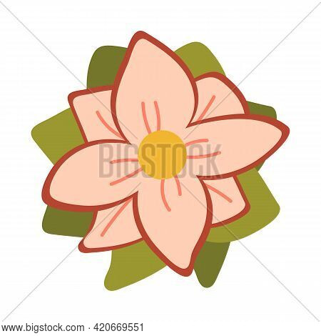 Pink Flower With Green Leaves. Plants In Bloom. Blooming Spring Flower. Close Up On Isolated Backgro