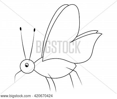 Mosquito. Sketch. A Blood-sucking Insect With A Pointed Proboscis. Vector Illustration. Coloring Boo