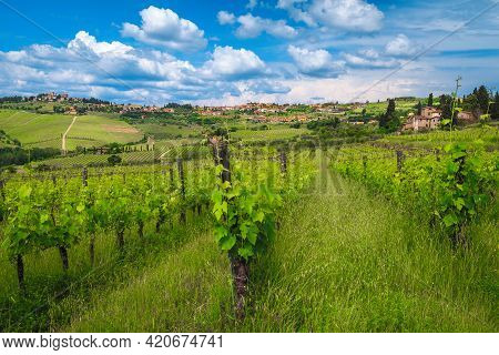 Green Vineyards And Grapevines On The Slopes. Picturesque Panzano In Chianti View With Beautiful Clo
