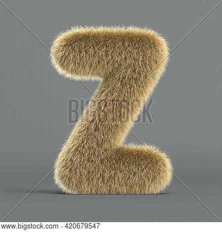 Hairy Font, Furry Alphabet, 3d Rendering, Letter Z