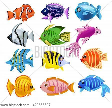 Collection Tropicals Colorful Fish. Addis Butterfish, French Angelfish, Reef Fish, Clownfish, An Oth