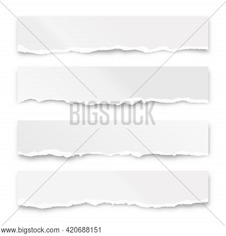 Ripped Paper Strips Isolated On White Background. Realistic Crumpled Paper Scraps With Torn Edges. S
