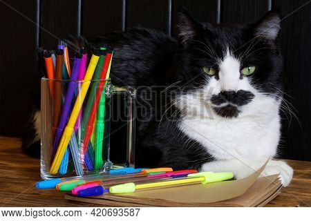 A Funny Cute Cat Lies On A Wooden Surface Next To Multicolored Felt-tip Pens, Fountain Pens And A No