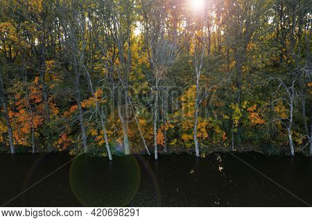 Beautiful View Of Autumn Forest On Riverbank