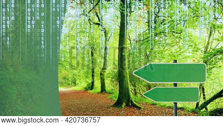 Composition of binary coding over green arrows and forest. global environment, data processing and digital interface concept digitally generated image.