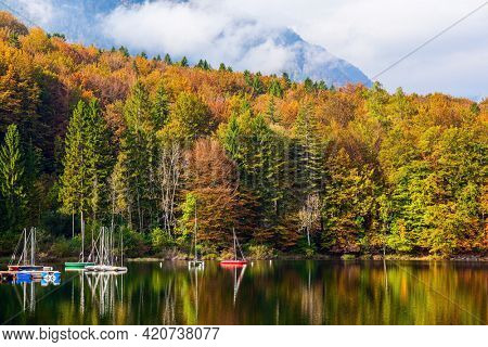 Magnificent lake with clear water is surrounded by mountains and dense forests. Sailing yachts and motor boats are moored to the shore. Bohinj is an alpine lake in the Julian Alps.