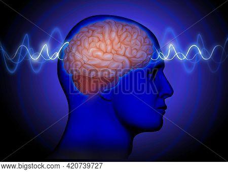 Medical Blue Illustration Of  Human Brain Waves