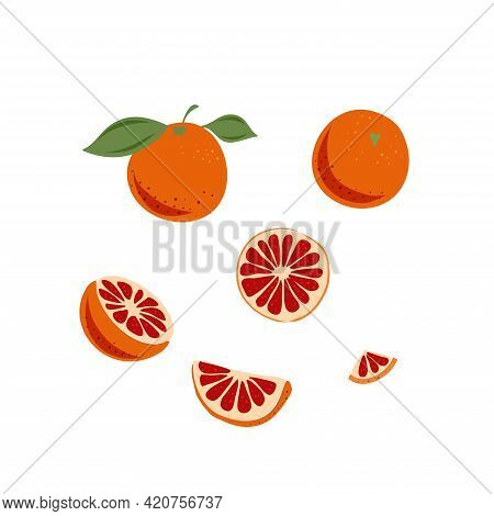 Hand Drawn Red Orange. Vector Illustration. Doodle Citrus Fruit