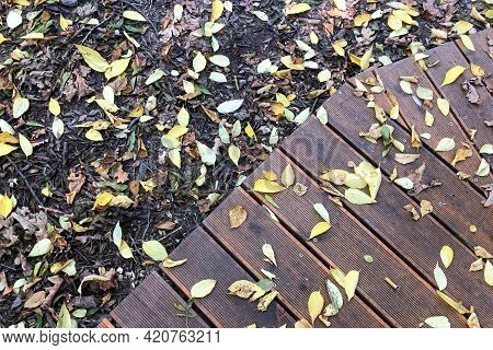 Yellow Autumn Leaves Lie On The Gray Ground And Wooden Flooring.