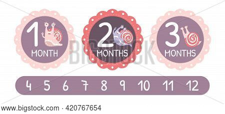Baby Month Card With Cute Snail Character As Gastropod With Coiled Shell Vector Template