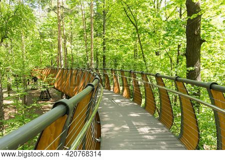 Russia,  Moscow: Aerial Ecological Trail Among Tree Crowns,  Vdnh Park, Spring.
