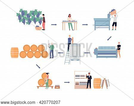 Wine Making Process, Production Of Popular Alcohol On Winery A Vector Infographic
