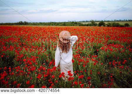 Woman With Hat Posing In A Poppy Field. A Girl With Beautiful Curly Hair Stands In A Flower Garden.