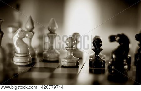 Wooden Chess Pieces On The Chessboard. Intellectual Game -chess. Chess Pieces On The Board. A Game O