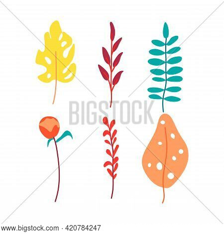 Vector Illustration Of Leaf Set. Abstract Icon Tropical Leaves. Tropical Nature. Minimal Nature Conc