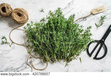 Thyme Herb Bunch. Bouquet Of Fresh Thymes On Light Marble Background With Skein Of Jute Twine And Sc