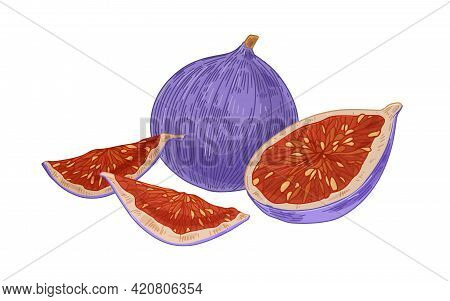 Fresh Whole Fig And Pieces, Cut Half And Quarters With Juicy Fleshy Pulp With Seeds. Exotic Tropical