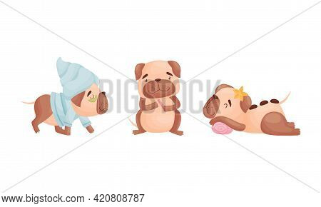 Cartoon Pug Dog Character Grooming Doing Spa Procedures And Polishing Nails Vector Set