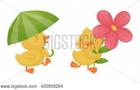 Cute Yellow Duckling Holding Umbrella And Flower Vector Set