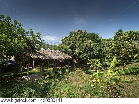 Traditional Thatched Bungalow In Tropical Fruit Farm Plantation Near Kampot Cambodia