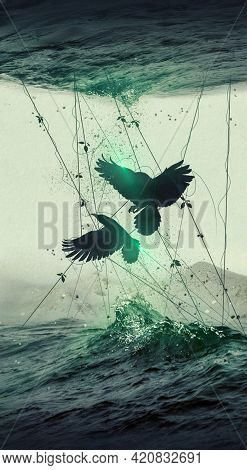 An Image Of Two Crows In A Web Over The Waves Of The Sea