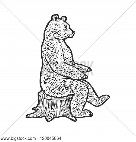 Bear Sits On Tree Stump Sketch Engraving Vector Illustration. T-shirt Apparel Print Design. Scratch